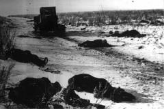 Убитые немцы. Дон, 14.01.1943 г