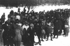 Военнопленные (венгры). Дон, 14.01.1943 г
